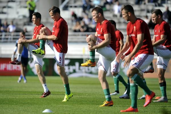 A magyar labdarúgó-válogatott melegít az Európa-bajnoki selejtezõsorozat F csoportjában játszott Finnország--Magyarország labdarúgó-mérkõzés elõtt Helsinkiben. 1--0-ra legyőzték a finn csapatot. Mti-fotó: Kovács Tamás