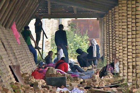 Menekültek a szabadkai téglagyárban