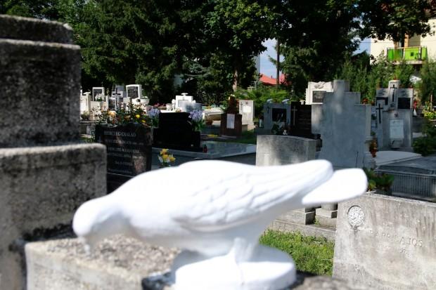 A gyászoló családoknak természetesen a későbbiekben is módjában áll majd bármelyik kegyeleti vállalkozótól megrendelni a temetési szertartásokhoz kapcsolódó hivatali ügyintézést