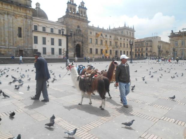 Bogota_foter2