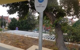 VESZTESÉG – A városrehabilitáció zöld áldozatai
