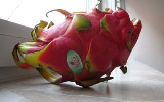 Egzotikus gyümölcsök kezdő fogyasztóknak