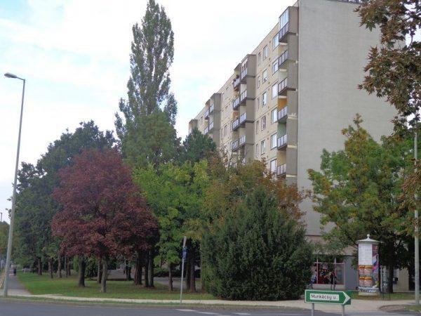 Azbesztszórás tapasztalható a Jutasi út 59. számú épület lépcsőházaiban is, összesen 2500 négyzetméteren