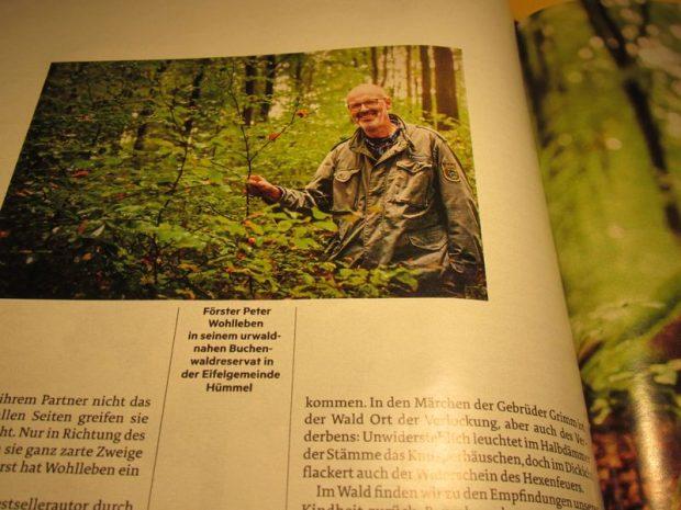 Peter Wohlleben erdész, bestsellerszerző látható a fotón a Stern 2015. október 15-i számában