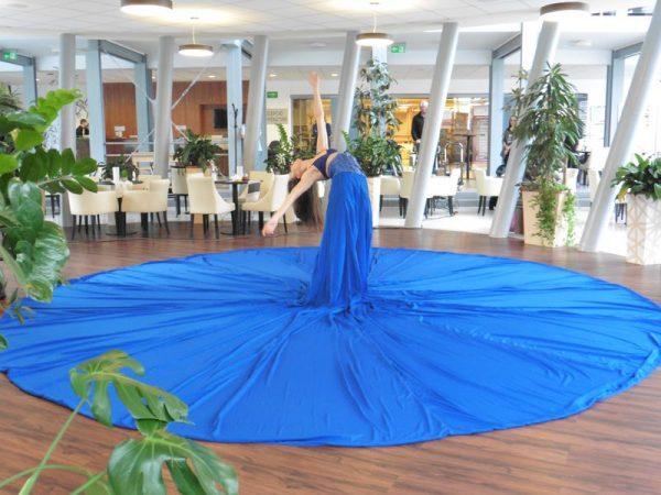 A sajtótájékoztató résztvevői Frenák Pál táncosának előadásában gyönyörködhettek. Fotók: re