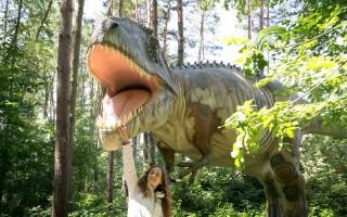 Négyméteres T-rex a Gulya-dombon
