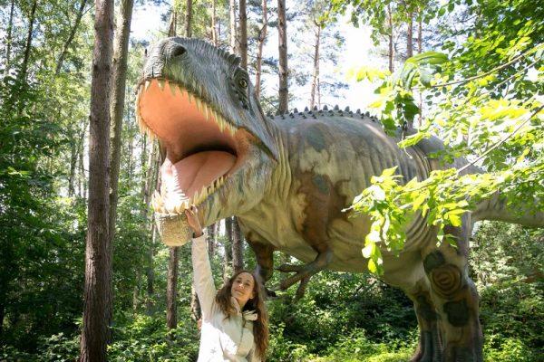 A hatalmas T-rex. A képeken az állatkert munkatársa, Koloszár Anita látható az őslényekkel. Fotók: veszprémi állatkert