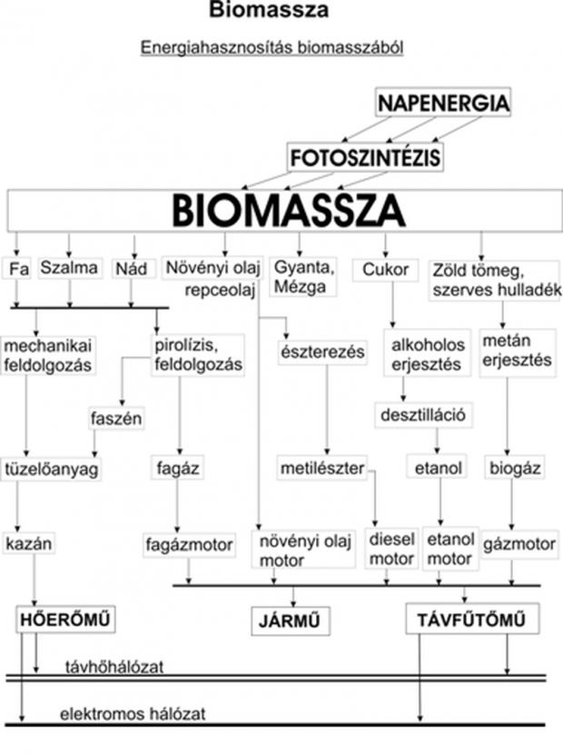Energiahasznosítás biomasszából