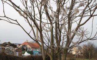 Környezetszennyezés és zaj Jutaspusztán