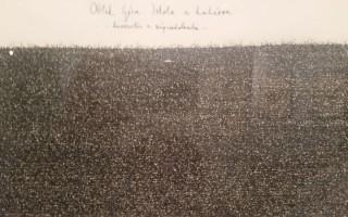 Képbe zárt írások: a szavak krízisétől a tiszta formáig
