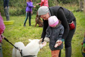 Családbarát kutyaiskolai foglalkozás a 4 Tappancs Veszprém városi kutyaiskolában