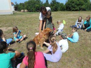 Diákok ismerkednek a kutyás balesetek elkerülésének módjaival és a helyes viselkedéssel, ha idegen kutyával találkoznak