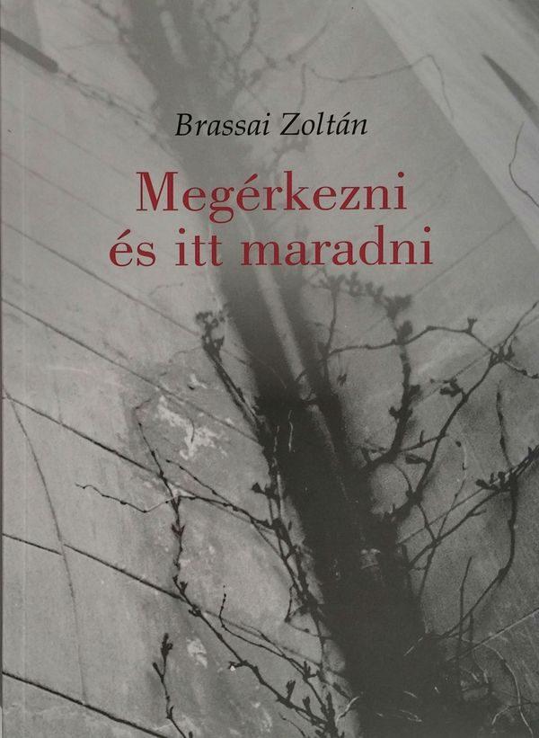 Brassai Zoltán új tanulmánykötetének borítója. Fotó: Művészetek Háza