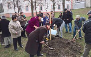 SZÍNHÁZKERT – Legyen élő, közösségi tér az Elnökök ligete!