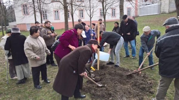 Civilek pótolják a bolgár elnök fáját az  Elnökök ligetében. Fotó: Wéber László