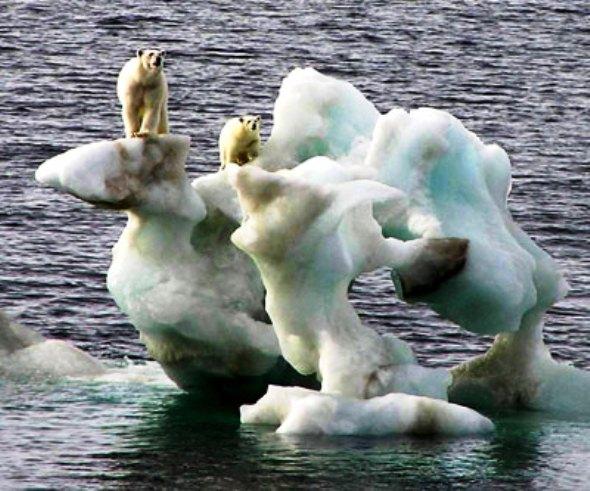 Dr. Tóth József Károly: A klímaváltozás olyan több szálon futó krimisorozat, melynek tettese az elejétől fogva ismert: az ember. Képünk illusztráció