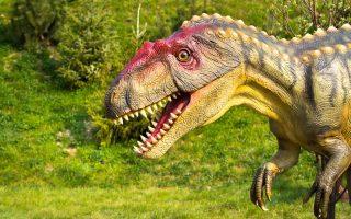 ÁLLATKERT – Felébredtek téli álmukból a dinoszauruszok