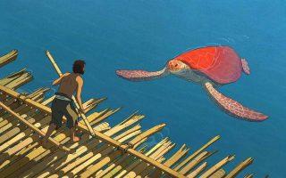 FILMKLUB – A vörös teknős