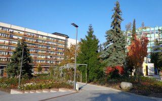 NAGY FALAT – Mészáros Lőrinc bevásárol Veszprémben?