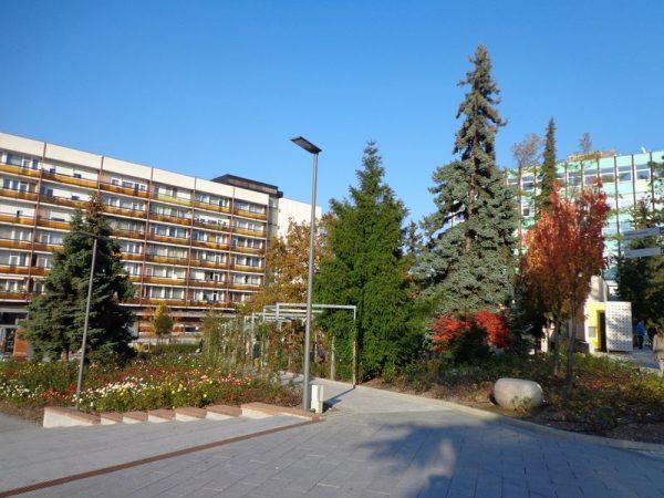 Egy potenciális befektető jól be tudna vásárolni Veszprémben