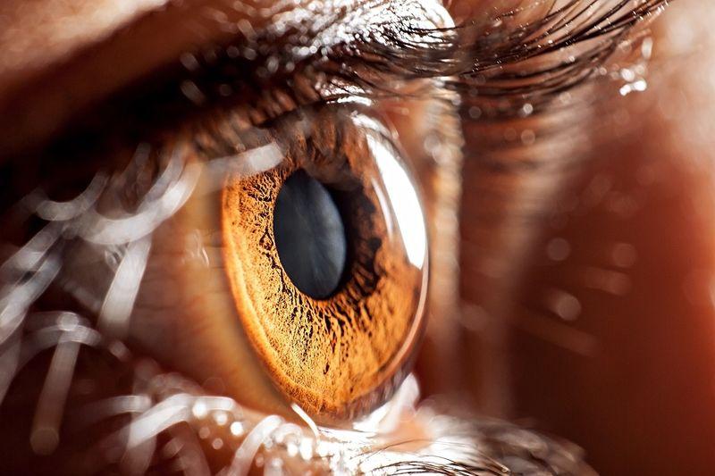 Ha a szem digitális kamera volna, 576 megapixeles lenne. Ettől messze elmaradnak a csúcskategóriás mobilok kamerái. Fotó: shutterstock.com
