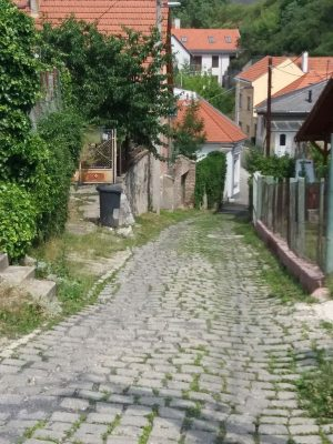 Festő utca