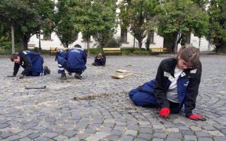 PARKSZÉPÍTŐK – Jövőre vizsgázik az első osztály