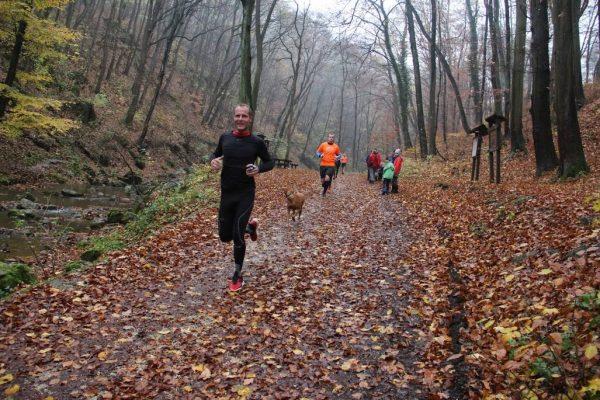 Bakony félmaraton. Fotók: az egyesület Facebook-oldaláról