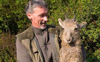 ÁLLATKERT – Szibériai kőszáli kecskék jöttek