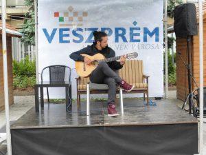 Palásti Máté gitárművész