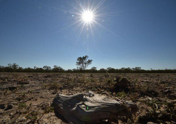 Csontszáraz a föld. Fotó: Peter Parks/AFP