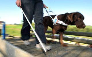 SZEMLÉLETFORMÁLÁS – Hogyan forduljunk a fogyatékkal élők felé?
