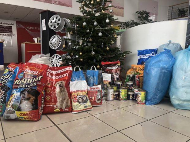 A veszprémi menhely egész évben fogad adományokat a lelkes állatbarátoktól, viszont idén karácsonykor, hagyományteremtő jelleggel, a helyi Peugeot-kereskedés saját szalonjában szervezett gyűjtést
