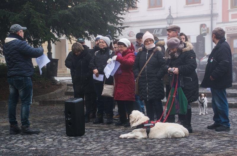 A szakszervezeti képviselők a közgyűlés előtt flashmobbal hívták fel a képviselők figyelmét a kérésükre. A vezető fotót Dániel Mária Magdolna, a többi fotót a szerző készítette