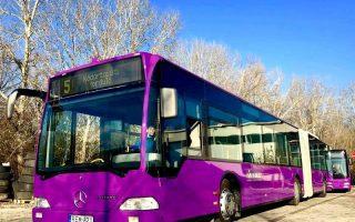 LILA GŐZ – Honnan hova és mikor megy a busz?