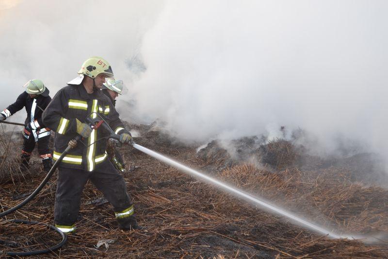A fotók 2018. április 7-én készültek Balatonedericsen, ahol nádas égett. A fényképek a katasztrófavédelem saját archívumából valók