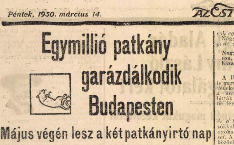 Az Est című lap így számolt be az első központi patkányirtásról – a cím csak azokra a népi statisztikákra utal, miszerint egy nagyvárosban körülbelül annyi patkány él, ahány ember. Fotó: Az Est
