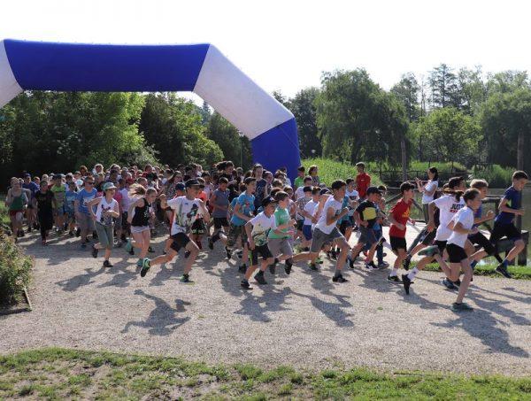Veszprémben 336 diák futott le egy mérföldet a csodás környezetben kijelölt pályán. Fotó: VEDAC