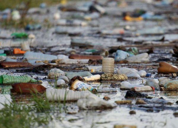 Műanyag palackok a Tisza vizén. Fotó: Bugány János/MTI