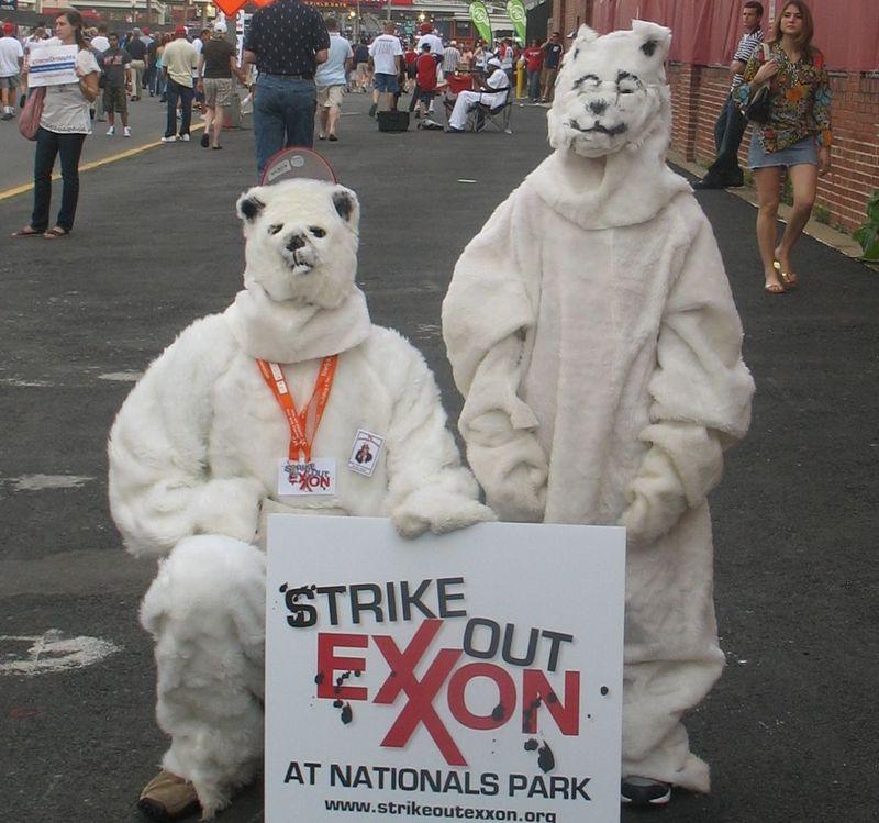 Jegesmedve-jelmezes tüntetés az ExxonMobil ellen Washingtonban, 2008-ban. Fotó: Flickr