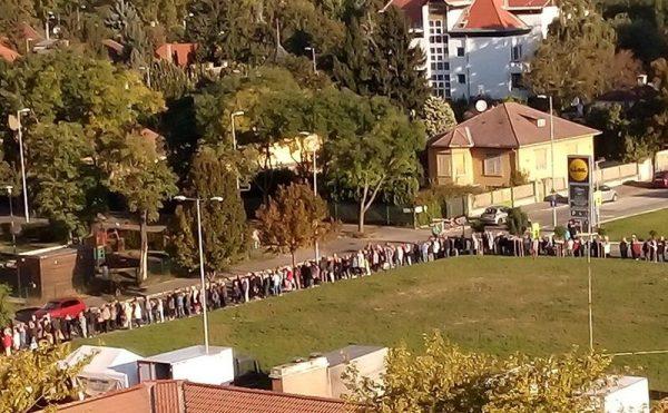 Kampánykrumpli osztás a főváros XI. kerületében. Fotó: olkt.hu