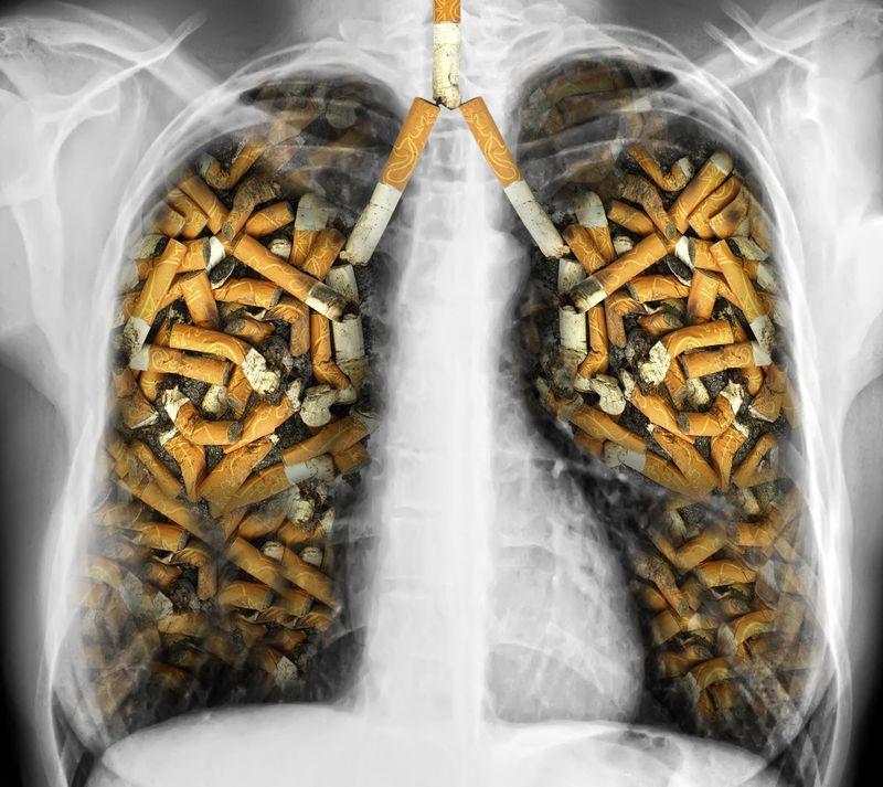 Füstmentes Világnap