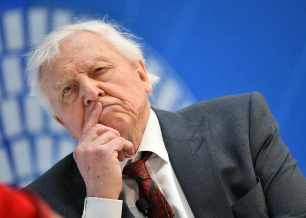 David Attenborough az IMF rendezvényén, egy természetről és gazdaságról szóló beszélgetésen, 2019. április 11-én. Fotó: Mandel Ngan/AFP