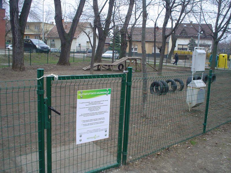 Kutyafuttató Budapest XV. kerületében. Fotó: bpxv.hu