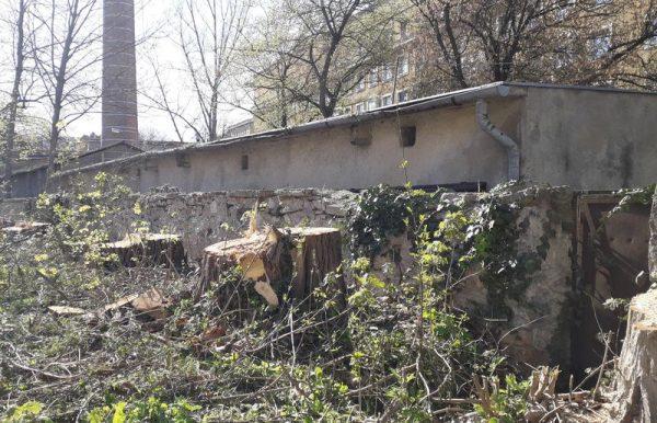 Az épület mögött minden fát kivágtak. Fotó: Veszprém Kukac
