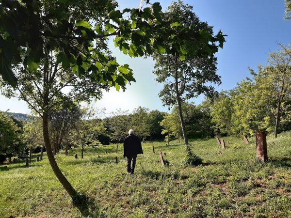 A lovasi temetőben. Fotó: a szerző