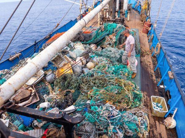 Fotó: oceanvoyageinstitute.org
